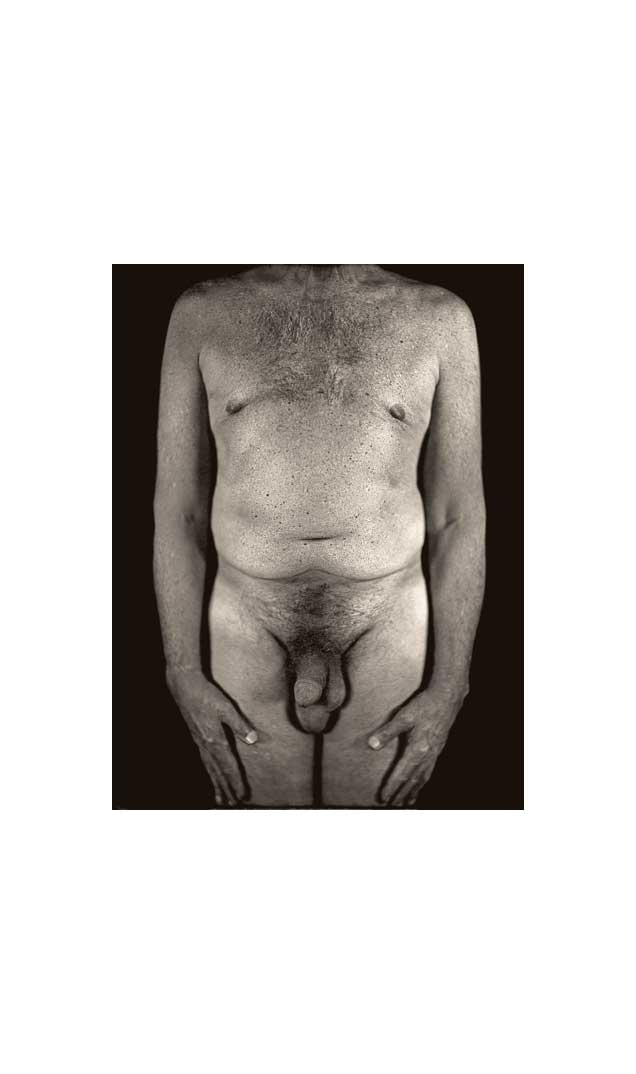 Untitled Torso Diptych (left panel), 2000