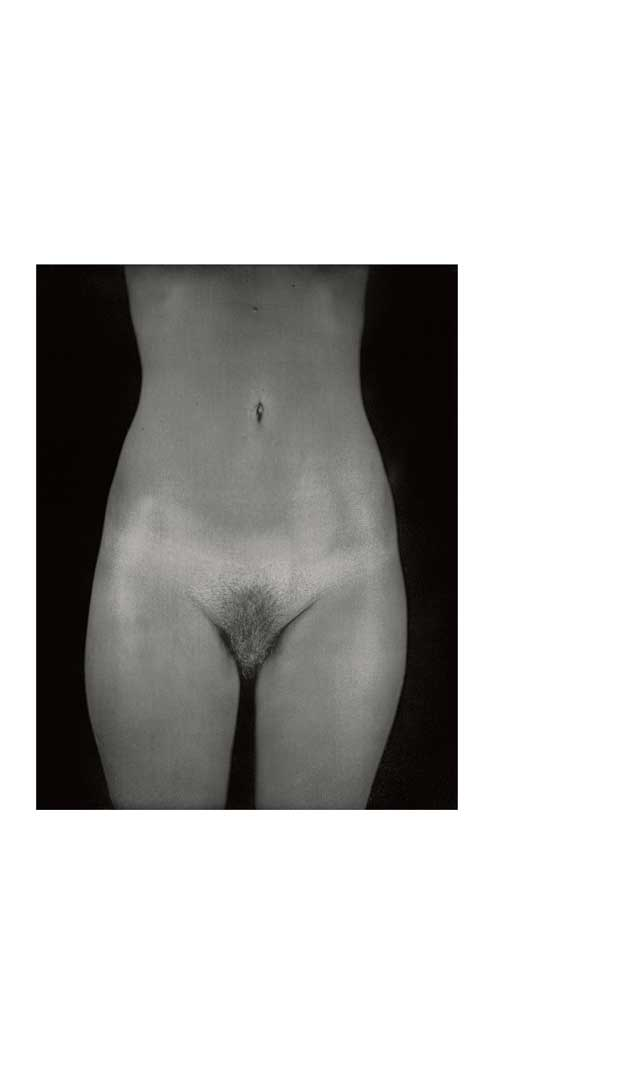 Untitled Torso Diptych, 2003
